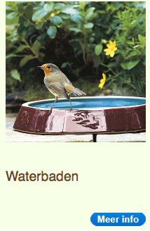 Waterbaden|vogel|kKippen houden