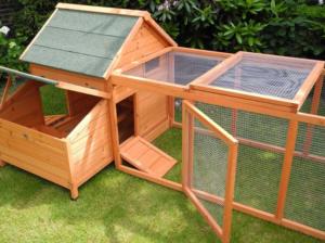 kippenren Risoul | Kippen houden